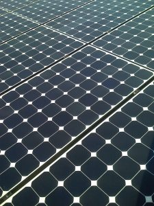 Sedumdak met zonnepanelen close up