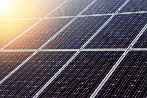 Sedumdak met zonnepanelen